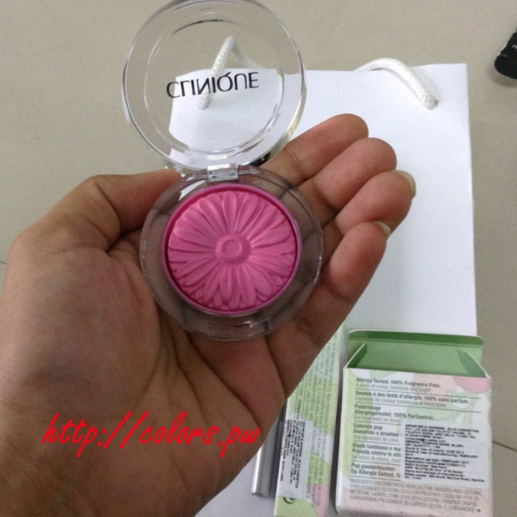 Clinique Plum Pop (04) blush and quickliner for eyes intense